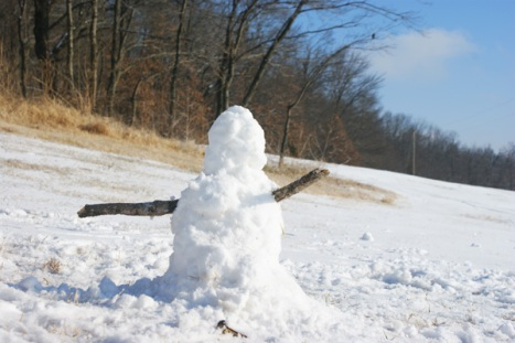 The boys built an awesome snowman this afternoon...I bet they worked all day on it!  They were so proud.