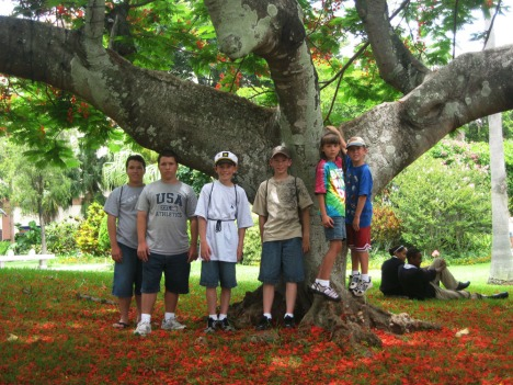 The kids pose under a Poinciana Tree